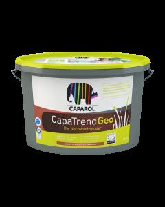 CapaTrendGeo