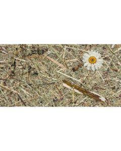 selbstklebend Heutapete Wildspitze Margaritta